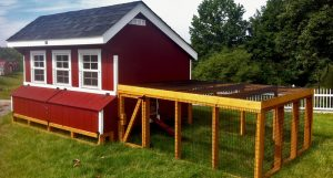 Why Chicken Coop Plans?